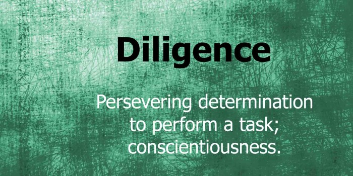 Diligence Rules – Motivational