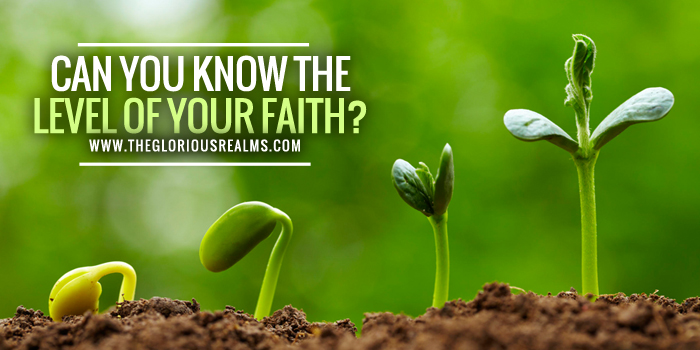 Can you know the Level of your Faith?